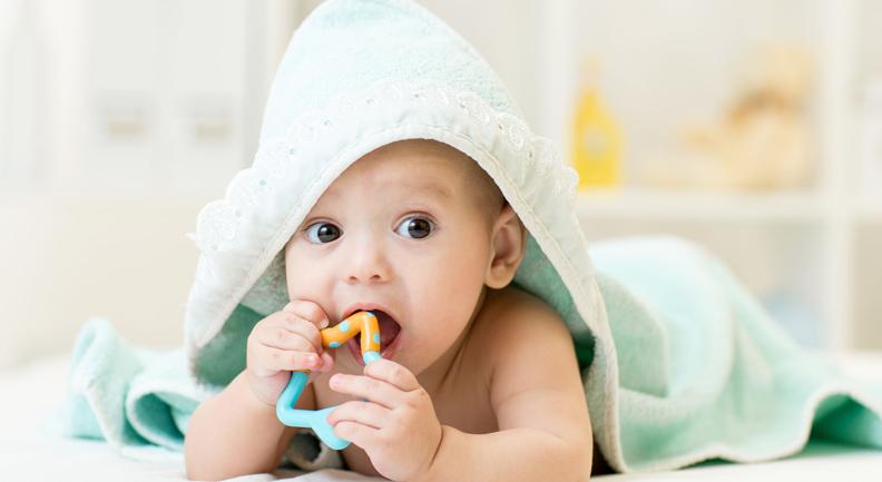 Sviluppo della dentizione: dai denti da latte a quelli del giudizio